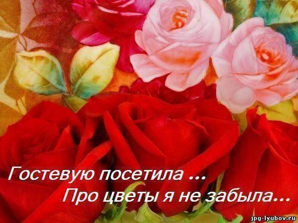 бесплатные Картинки с надписью В гостевые, романтические картинки про любовь