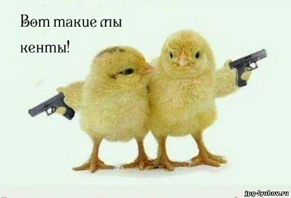 http://jpg-lyubov.ru/_ph/220/2/483603108.jpg