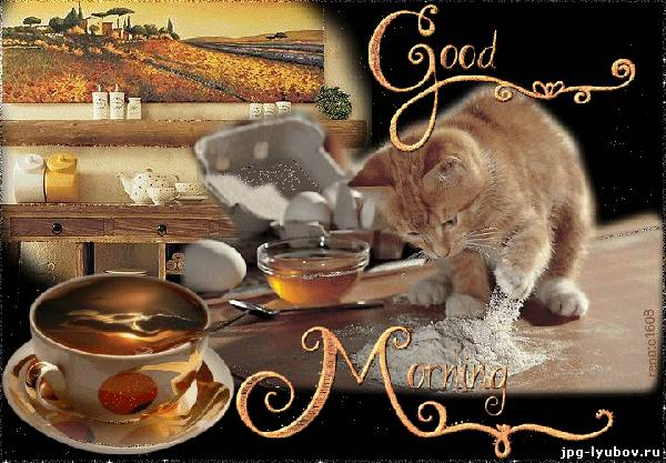 good morning красивые картинки