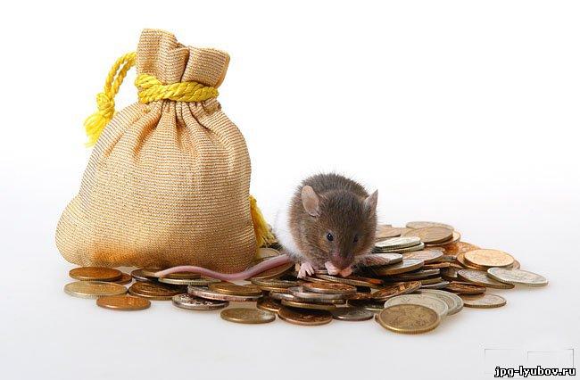 Любовь и деньги картинки картинки про