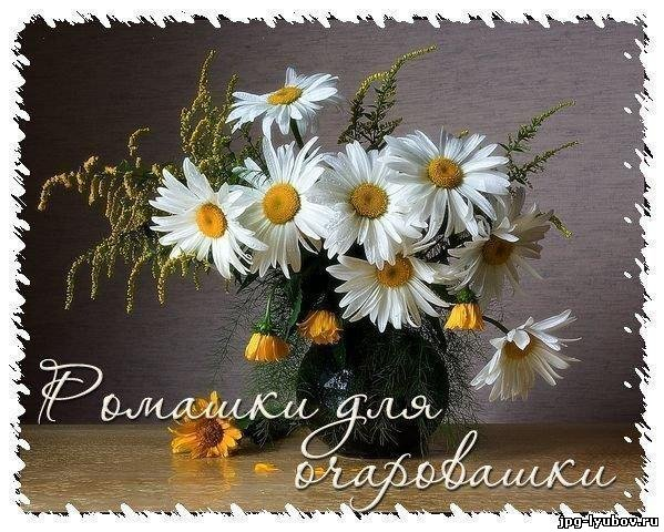 http://jpg-lyubov.ru/_ph/92/2/54097794.jpg