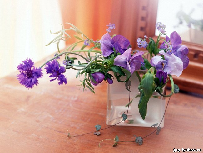 Картинки Цветы, романтические картинки про любовь